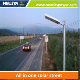 Risen Popular Aluminum 20W Solar Street Lamp