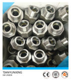 Forged Carbon Steel Fittings Forged Socket Weld Union