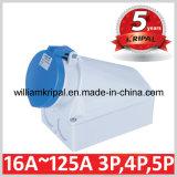 IP44 63A 2p+E Wall Mounted Receptacle
