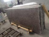 Granite Tile G664 Granite Slabs