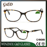 New Design Acetate Glasses Optical Frame Eyeglass Eyewear Nc3317