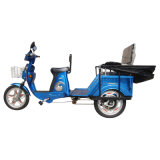 Passenger Electric Tricycle (TC-007)