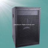 300W Professional Active Speaker Subwoofer/Powerd Audio/Subwoofer (F-55B)