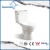 Siphonic Two Piece Single Flush Ceramic Toilet (ACT6860)