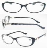 Eyewear Glasses/Plastic Eyewear/Fashion Eyewear (RP487014)