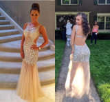Stunning Beaded Sheer Tulle Celebrity Open Back Prom Long Evening Dresses