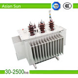 New Type Oil Immersion Power Transformers Outdoor Made in China