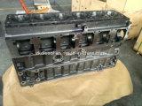 Caterpillar 3116 Cylinder Block 1495401 for Cat 3116 Diesel Engine