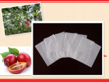 Weather-Resistant Insect, Chemical Prevetnion Environmental Paper Mango Growing Bag Made in China