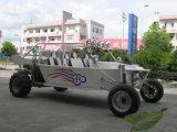 3000cc Sand Buggy