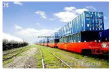 Consolidate Lowest Logistics Freight From China to Guyana Shipping