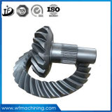 OEM Stainless Steel/Carbon Steel Forging and Machining Finish Helical Gear
