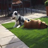 Carpet Recycling Polypropylene Yarn for Outdoor Carpet