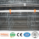 Automatic battery Layer Chicken Cage System