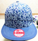 More Color Printing Cloth Quickly Recover and 3 D Embroidery Baseball Cap