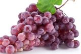 Grape Seed Extract / Vitis Vinifera Extract / Polyphenols