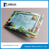 Professional Full Color Flyer Printing Services