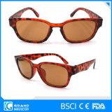 Classical Style Frame Leopard Zebra Plastic Sunglasses for Women