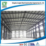 Steel Structure Warehouse with Professional Manufacturer