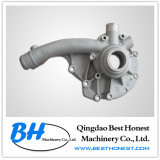 Auto Water Pump (Cast Iron / Ductile Iron / Grey Iron)