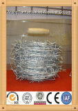2014 Hot Dipped Galvanized Razor Barbed Wire (TYE-16)