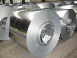 Hot Dipped Galvanized Steel Coil /PPGI