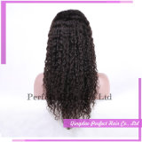Malaysian Indian Remy Glueless Curly Hair Lace Front Wig
