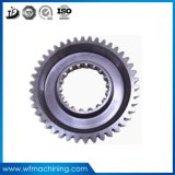 OEM Tractor Transmission Screw Gear/Worm Gear for Gearbox