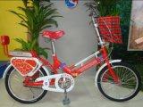 20′′ Steel Folding Bike for Girls Sh-Fd005