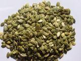 Wholesale Price of Pumpkin Seeds