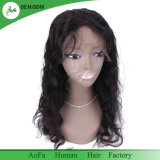 Unprocessed 100% Human Hair Lace Wig Virgin Brazilian Hair