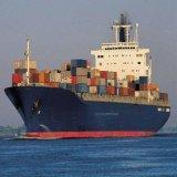 Shipping Agent From Foshan/Ningbo/Guangzhou/Shenzhen to Sokhna, Egypt
