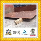 Copper Plate / Copper Sheet