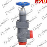 Refrigeration Ammonia Stop and Check Valve with Cap for Cold Room Pipe