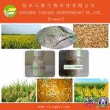 Price Preferential Herbicide Bromacil (95%TC, 50%SC, 80%WP, 80%WDG)