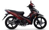 High Quality Cheap Price Motorcycle 100cc, 110cc Super Cub