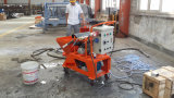Customer Visit to Dawin N2 Semi-Automatic Mortar Plastering Machine in Competitive Prices