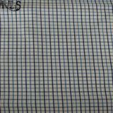 100% Cotton Poplin Woven Y/D Fabric for Clothing Shirts/Dress Rls50-24po