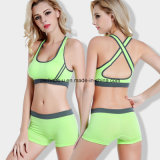 Fashion Quickly Dry Ladies Running Shorts Yoga Bra Fitness Suit