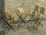 Patio Steel Dining Furniture (IF-1006)
