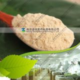 Hot Selling 80~200 Mesh Dehydrated Onion Powder