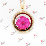 Fashion High Quality Gold Round Crystal Lockets Charms Pendant Jewelry (GRL35)