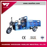 New Model of 3 Wheel 48V Power Electric Cargo Tricycle for Farm Transfer