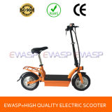 "36V10ah Lithium Ce 12"" Pocket Electric Bike"