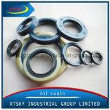 High Quality NBR Tc/Tb/Ta Xtsky Oil Seal 19-34.5-7