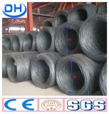 High Quality Steel Wire Rod SAE1008 in China Tangshan