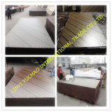 18mm Film Faced Plywood for Kuwait