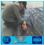 HDPE Geomembrane with Best Strength for Landfill Fish Pond Road