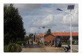 20W Solar Street Light in Solar Lighting (XD-TYN042)