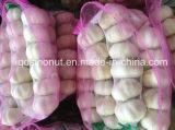 Chinese Fresh White Garlic (250g/mesh bag)